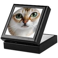 Singapura Cat Keepsake Box