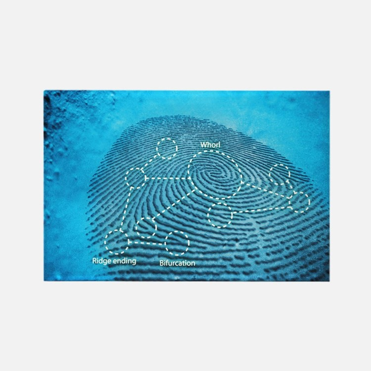 Fingerprint, computer artwork Rectangle Magnet