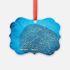 Fingerprint, computer artwork Ornament
