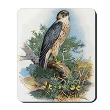 Merlin, historical artwork Mousepad