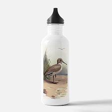Dunlin, historical art Water Bottle