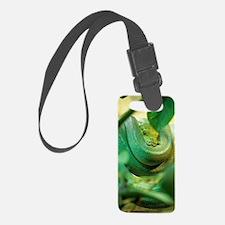 Green tree python Luggage Tag