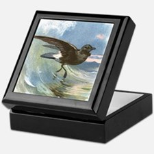Storm petrel, historical artwork Keepsake Box