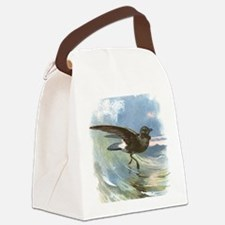 Storm petrel, historical artwork Canvas Lunch Bag
