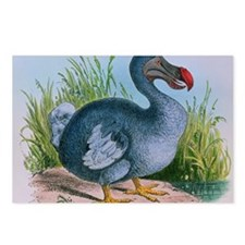 Extinct dodo Postcards (Package of 8)
