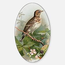 Tree pipit, historical artwork Sticker (Oval)
