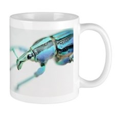 Painted weevil Mug