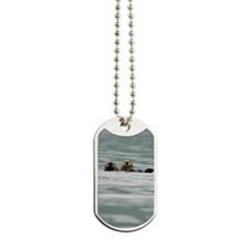 SwitchCase_Otter_14 Dog Tags