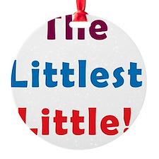 Littlest Little Ornament