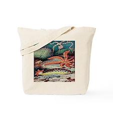 Vintage Sea Creatures Tote Bag