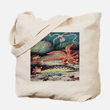 Vintage Sea Creatures Tote Bag