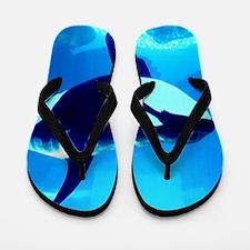 Killer Whale Flip Flops