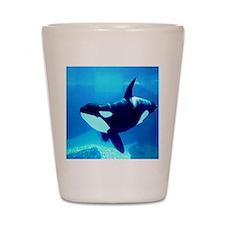 Killer Whale Shot Glass