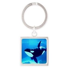 Killer Whale Square Keychain