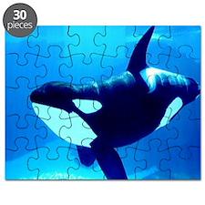 Killer Whale Puzzle