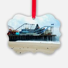 Jersey Shore Seaside Heights Boar Ornament