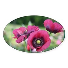 Monets Poppies Decal