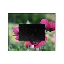 Monets Poppies Picture Frame