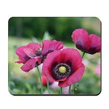 Monets Poppies Mousepad