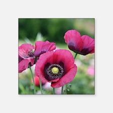 "Monets Poppies Square Sticker 3"" x 3"""