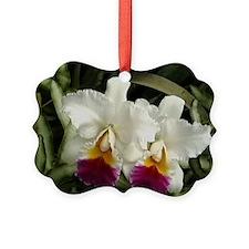 White Orchids Ornament