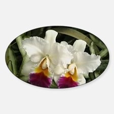 White Orchids Decal