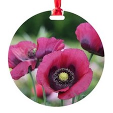 Monets Poppies Ornament
