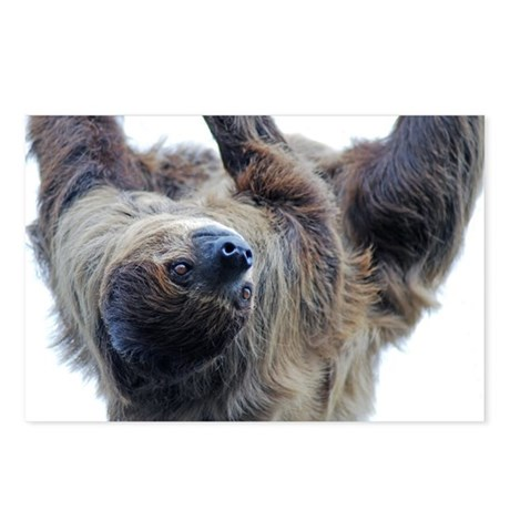 Sloth Pillow Case Postcards (Package of 8)
