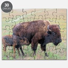 Bison in the Spring Puzzle