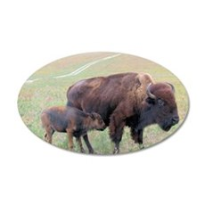 Bison in the Spring Wall Decal