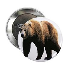 """grizzly bear 2.25"""" Button"""