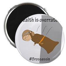 Brossassin Stealth Magnet