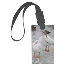 American White Pelicans Luggage Tag