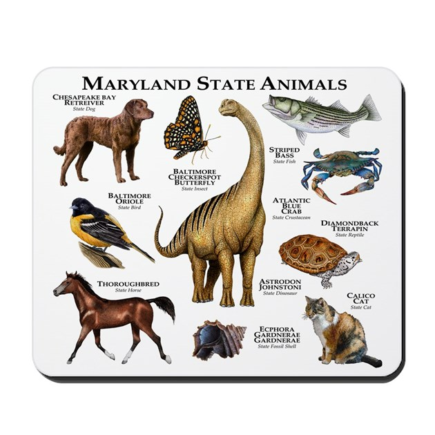 Maryland State Animals Mousepad By Admin Cp6091949