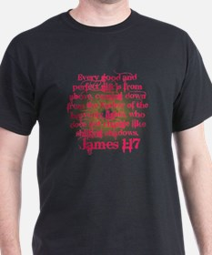 James 1:17 in Pink T-Shirt