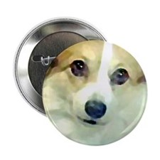 "Pembroke Corgi Face 2.25"" Button"