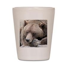 Lazy grizzly Shot Glass
