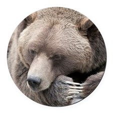 Lazy grizzly Round Car Magnet