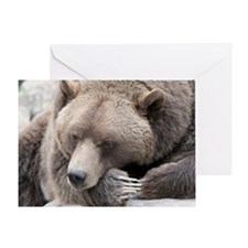 Lazy grizzly Greeting Card