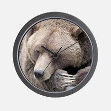 Lazy grizzly Wall Clock