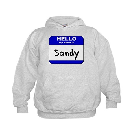 hello my name is sandy Kids Hoodie
