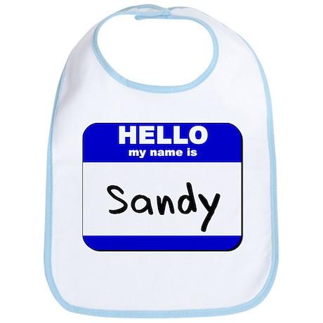hello my name is sandy Bib
