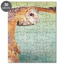 Barn Owl Puzzle