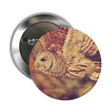 """Barred Owl 2.25"""" Button"""