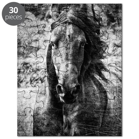 Friesian Puzzle