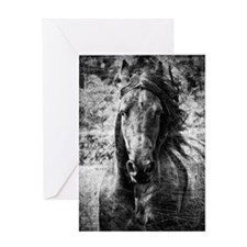 Friesian Greeting Card