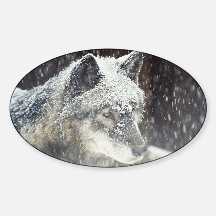 snowy face Decal