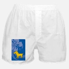 Horse Journal Boxer Shorts