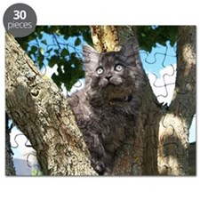 Fluffy Grey Kitten Puzzle