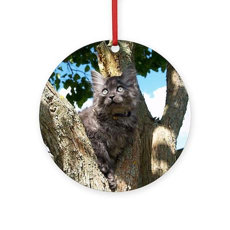Fluffy Grey Kitten Round Ornament